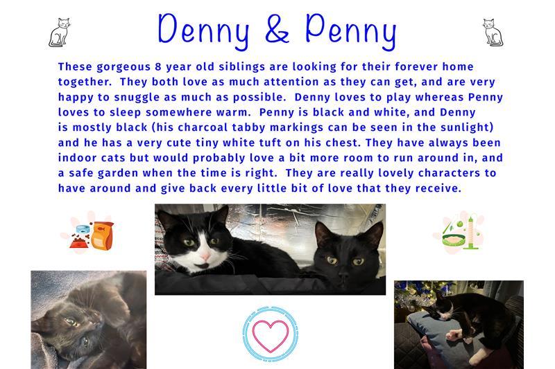 Denny & Penny Image