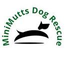 Mini Mutts Logo