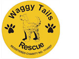 Waggy Tails Logo